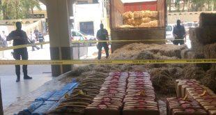 الديستي ولابيجي عُيُونُ مدينة فاس التي لا تنام ليلا ونهارا : حجز 2 طن من مخدر الحشيش